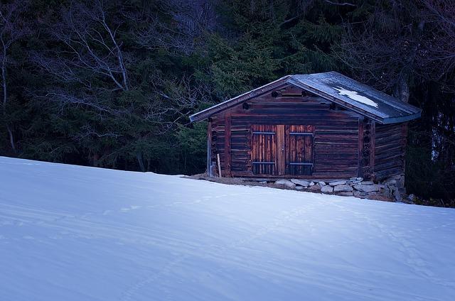Winter Log Cabin Survival Kit Tru Log Siding