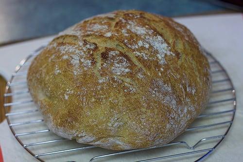 dutch oven bread photo
