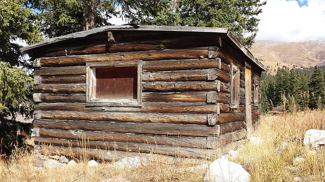 the mysterious phenomenon of cabin napping