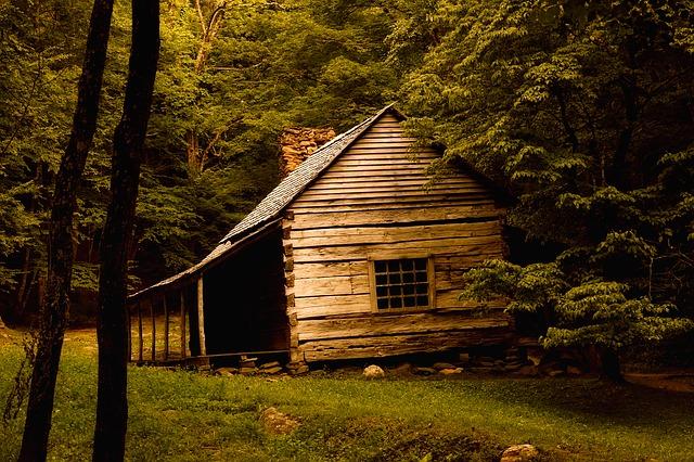 old cabin photo