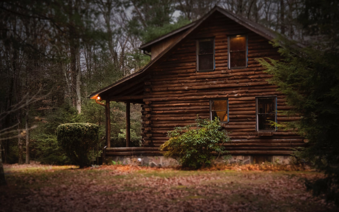 Choosing the Best Wood Options for a Log Cabin