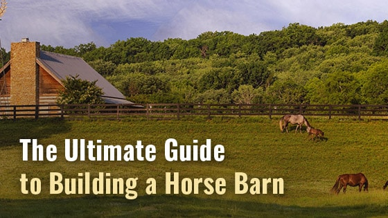 The Ultimate Guide to Building a Horse Barn